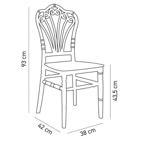 Hafif Şeffaf Düğün Salonu Sandalyesi - tfs4075