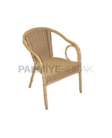 Bamboo Aluminum Chair