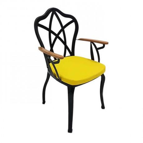 Siyah Boyalı Restoran Bahçesi Kış Bahçesi Demir Metal Ferforje Sandalye - fts6867