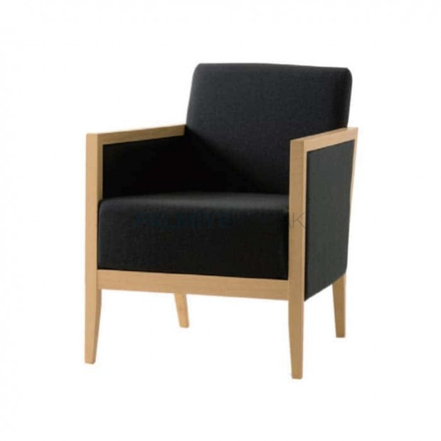 Modern Bergere with Black Fabric
