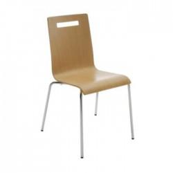 Laminate Monoblock Metal Leg Chair