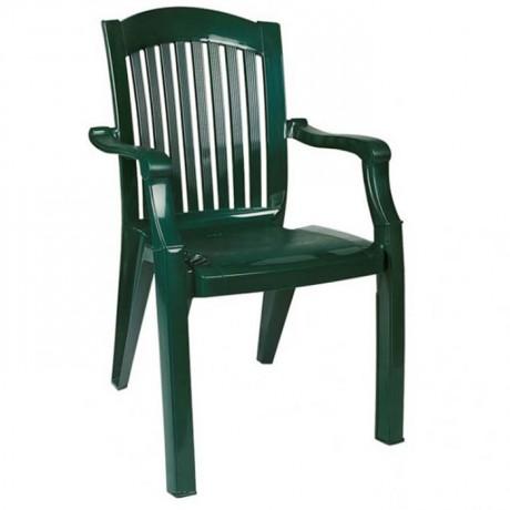 Lüks Plastik Kollu Sandalye Yeşil Renkli - plsk3092