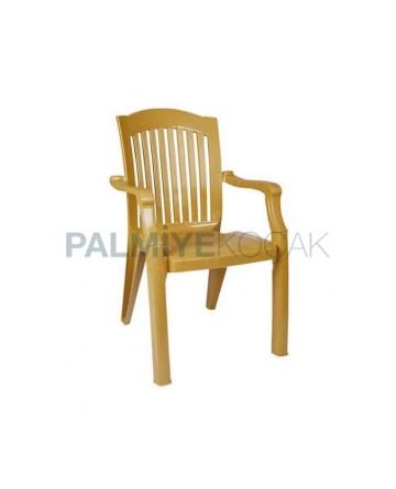Plastic Luxury Arm Chair