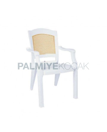Back Matted Double Color Luxury Plastic Arm Chair