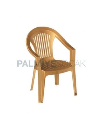 Teak Colorful Plastic Garden Arm Chair