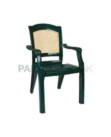 Green Beige Colorful Luxury Arm Chair