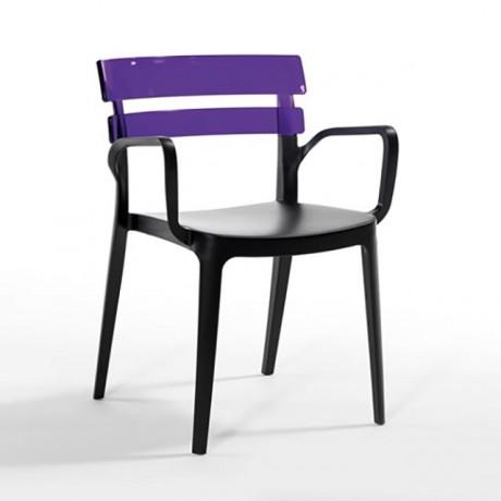 Cam Elyaf Polipropilen Karışımlı Oturum ve Transparan Sırtlı Kollu Plastik Sandalye - pls171b