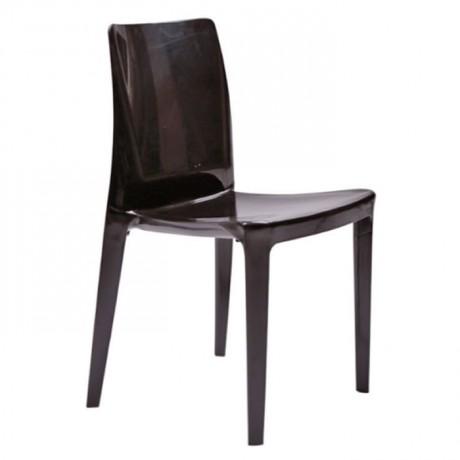 Siyah Parlak Bahçe Sandalyesi - pls47