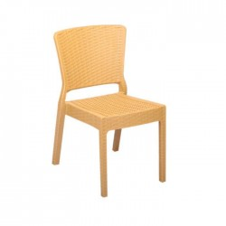 Beige Color Rattan Injection Chair
